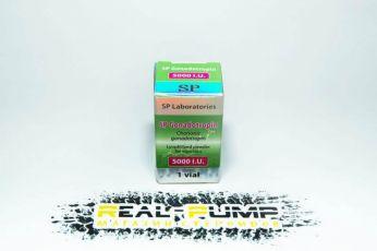 Gonadotropin 5000 (SP Labs)