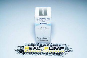 Nandro PH