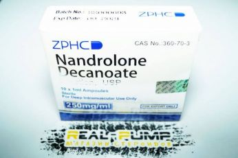 Nandrolone Decanoate (ZPHC)